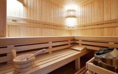 Įrenginėjame pirtį – kokią medieną pasirinkti?