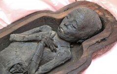 Mumijos iš arti (nuotraukų galerija)