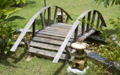 Liepteliai ir tilteliai – kaip nepasiklysti renkantis?