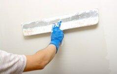 Medžiagos pertvaroms – mūrinė siena ar gipso kartono atitvaras?