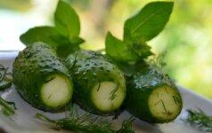 Traškūs šviežiai parauginti agurkai