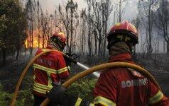 Vidurio Portugalijoje įsiplieskė naujų miškų gaisrų