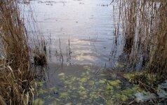 Krokų lankos ežere - dešimtys brakonierių
