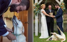 Jaunikio šuo sužibėjo vestuvėse: pažiūrėkite, kaip jis pozuoja nuotraukose