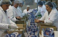 Žada naujų darbo vietų: reikės prižiūrėti nesergančius ir nestreikuojančius
