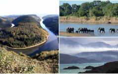 Gamtos sukurti stebuklai: parkai, kuriuose būnant sustoja laikas