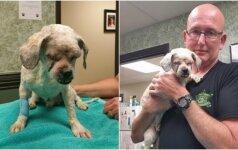 Aklas šuo neturėjo jokių vilčių: auksinės širdies pareigūnas pakeitė jo gyvenimą