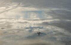 Zikos virusą nešantys uodai gali keliauti lėktuvais