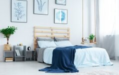 Patarimai, kaip stilingai dekoruoti namus turint taupų biudžetą