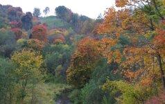 Kerinčio grožio vieta visai šalia sostinės: rudenį čia apsilankyti būtina
