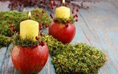 Pasidaryk pats: rudeniška žvakė obuolyje