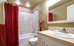 Vonia ar dušas – kas iš tikrųjų geriau?