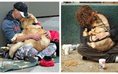 Širdį spaudžiančios nuotraukos įrodo - šuns meilės nenupirksi