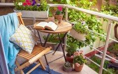 Terasa, balkonas, lodžija: kaip susikurti nedidelę oazę daugiabutyje