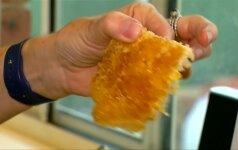 Australė miegamojo sienoje rado bičių sunešto medaus