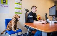 Rado būdą stresui įveikti: į darbą keliauja su šunimis
