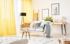 7 būdai, kaip nuomojamam butui suteikti charakterio