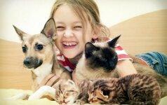 Kokiomis ligomis galima apsikrėsti nuo šuns arba katės