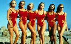 Kelly Packard, Carmen Electra, Donna D'Errico, Marliece Andrada, Traci Bingham, Angelica Bridges