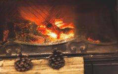 5 svarbiausi kriterijai renkantis židinį namams