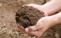 11 medžiagų, kurių geriau nedėti į kompostą