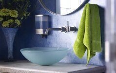 Kokias vonios interjero tendencijas žada Žaliojo medinio arklio metai?