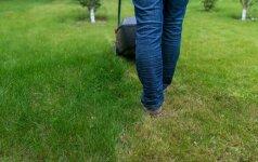 Plinta naujas mokestis: matuoja žolės ilgį