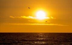 Dėl didesnės Saulės audros 10 metų būtų negalima naudotis technologijomis