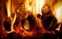 Kuo pasižymi dujų generaciniai katilai