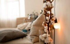 Amžinas sniegas – kaip susikurti stilingą kompoziciją iš medvilnės šakų