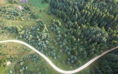 Be jokių užuolankų: tai, kas vyksta miškuose, neturi pritarimo