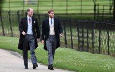 Princas Harry ir princas Williamas