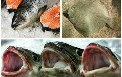 Žuvys, kurių prašoma nevalgyti