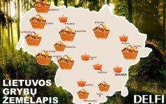 Lietuvos grybų žemėlapis: vienur - vos spėji rauti, kitur - tuščia