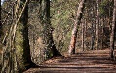 Vyras su moterimi nuvažiavo į mišką – negrįžta jau trečią parą