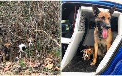 Palikti šuneliai sulaukė pagalbos: juos susekė keturkojis pareigūnas