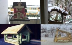 Lietuvių lesyklėlės: nuo prabangių pirktinių iki sunertų medžio pliauskų