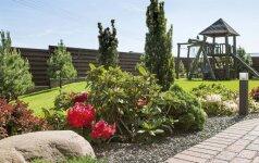13 arų sklypas mieste: asmeninę erdvę saugo augalai
