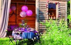 Pokyčiai per savaitgalį: purpurinis terasos įvaizdis