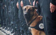 Tūkstančių širdis suvirpino nuo teroristų žuvusio šuns nuotrauka