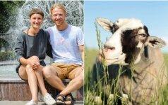 Išskirtinė sodyba: ožkos kaip šuniukai, sarginė karvė ir prieraišios vištos