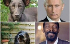 V. Putinas, Snoop Dogg