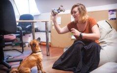 Lietuvos ofisuose galima pamatyti ne tik šunų, bet ir meškų