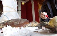 T.Ivanausko muziejui – eksponatų saugykla