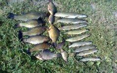 Nacionaliniai žvejybos ypatumai: ar įmanoma pagauti per didelę žuvį?
