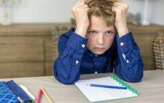 Ar tėvų pagalba sprendžiant namų darbus – meškos paslauga