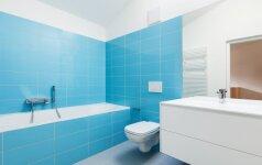 Darau pats: nebrangus vonios apdailos sienelės įrengimas