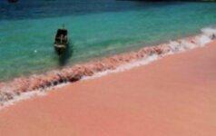 Išskirtinis grožis: nykstantis rožinės spalvos paplūdimys