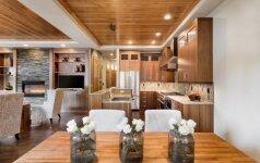 Virtuvė bendroje erdvėje: už ir prieš