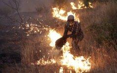 Miškų gaisrai Portugalijoje